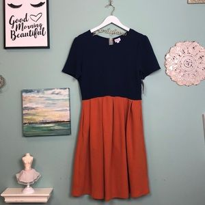 LuLaRoe Colorblocked Amelia Dress 2XL H1
